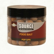 Бойлы Поп-ап Dynamite Baits The Source Pop-Up 20 мм